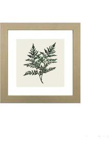 Quadro Decorativo Green Leaf I 23X23Cm Zebrano Infinity