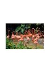 Painel Adesivo De Parede - Flamingos - 202Pn-G