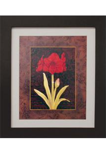 Quadro Montado Com Vidro E Papel Red Flower I 30X35Cm