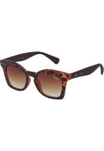 Óculos De Sol Flash M00020 Tartaruga