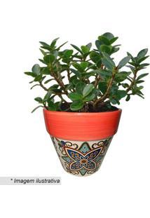Cachepot Cone Floral Vintage- Vermelho & Cru- 12,5Xøurban
