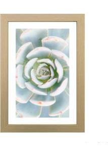 Quadro Decorativo My Garden I 23X33Cm Zebrano Infinity